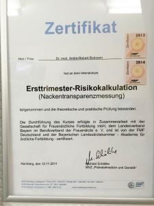 Frauenarzt Dr. Rotmann Rodgau NT Messung Nackentrasparenzmessung Zertifikat 800x1067